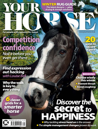 Your Horse Issue 471