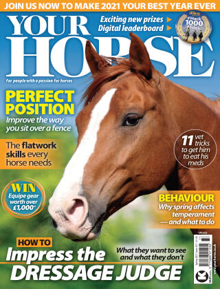 Your Horse Issue 477