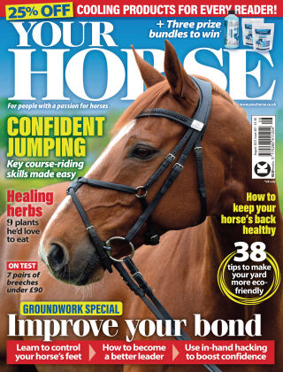 Your Horse August 2021