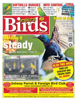 Cage & Aviary Birds 28 July 2021