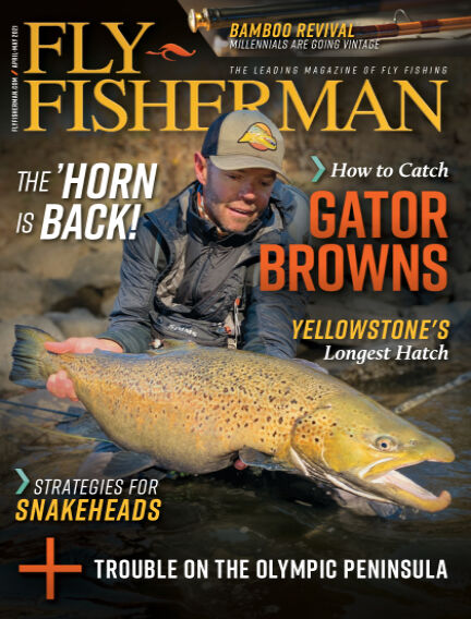Fly Fisherman March 02, 2021 00:00