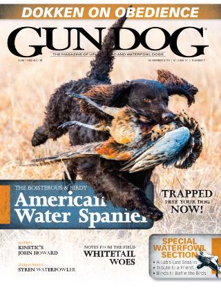Gun Dog November 2015