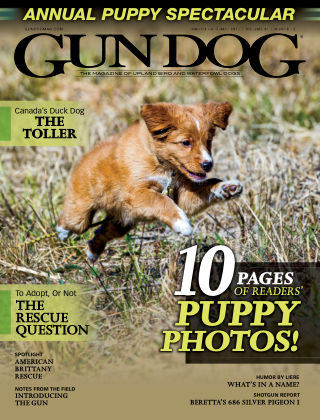 Gun Dog Mar-May 2019
