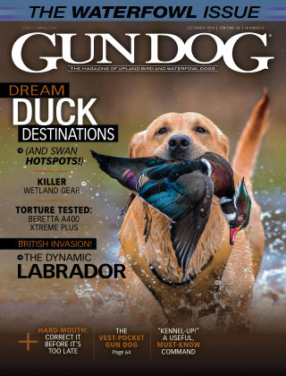 Gun Dog Oct 2019