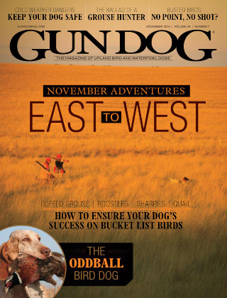 Gun Dog Nov 2019