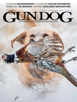 Gun Dog Dec-Feb 2020