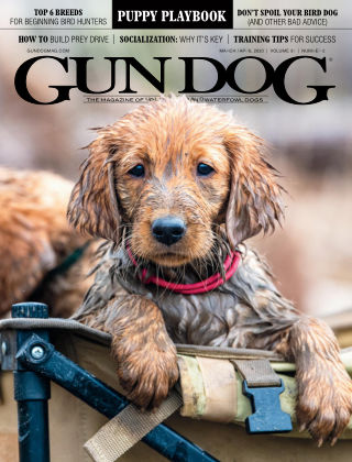Gun Dog Mar-Apr 2020