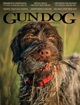 Gun Dog Jun-Jul 2020