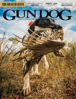 Gun Dog Aug 2020