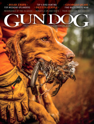 Gun Dog Sept 2020