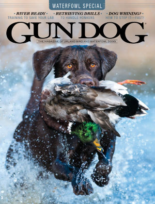 Gun Dog October 2020