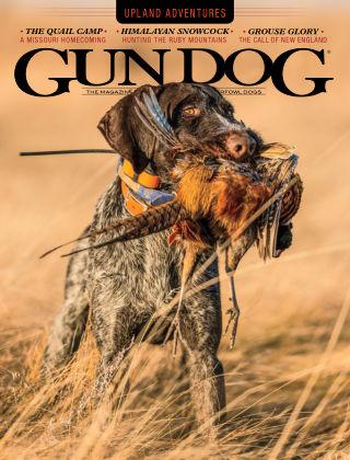 Gun Dog November 2020