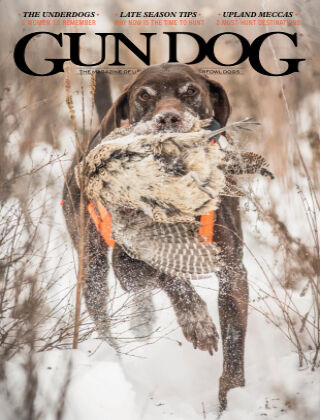 Gun Dog Dec 20 - Feb 21