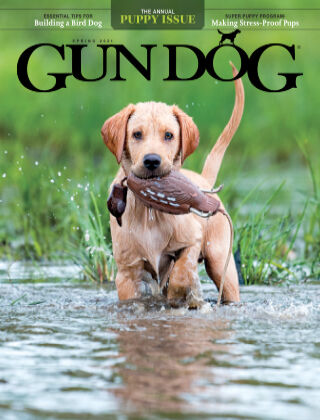 Gun Dog April/May - Spring