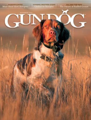 Gun Dog November