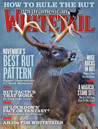 North American Whitetail Nov 2019