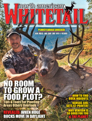 North American Whitetail February - Spring