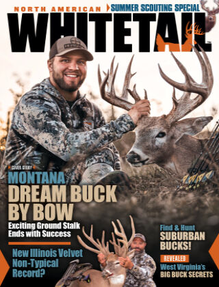 North American Whitetail July