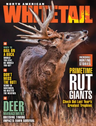 North American Whitetail November