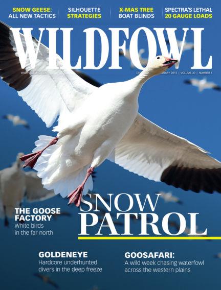 Wildfowl November 25, 2014 00:00
