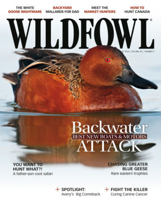 Wildfowl June / July 2015