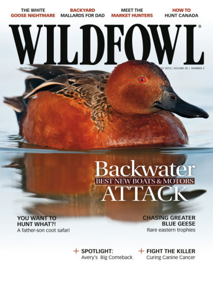 Wildfowl May 12, 2015 00:00