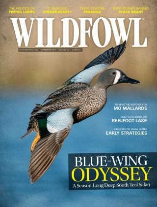 Wildfowl Sep 2017