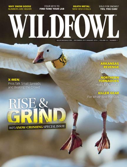 Wildfowl November 14, 2017 00:00
