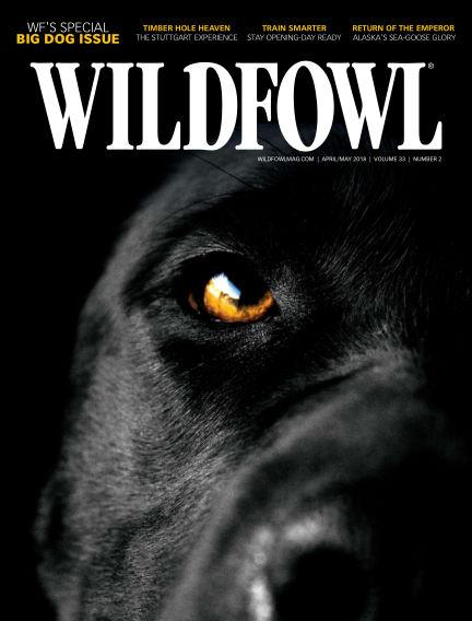 Wildfowl February 27, 2018 00:00