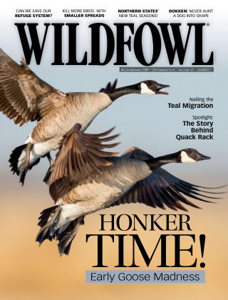Wildfowl Sep 2018