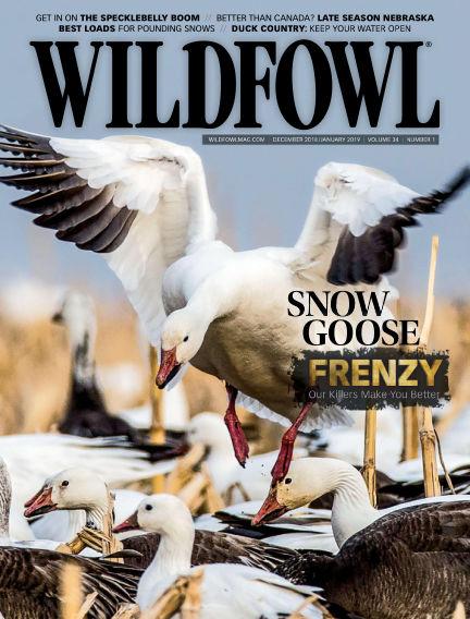 Wildfowl November 13, 2018 00:00