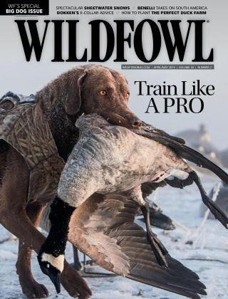 Wildfowl Apr-May 2019