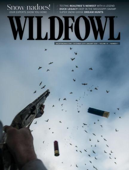 Wildfowl November 12, 2019 00:00