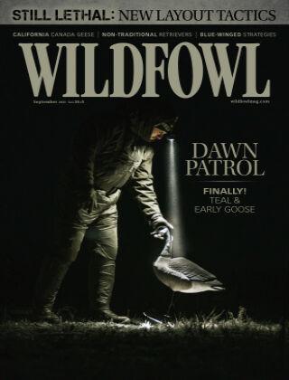 Wildfowl September