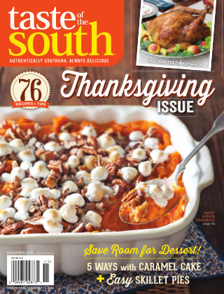Taste of The South November 2016