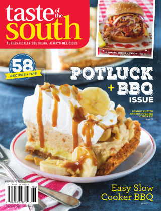 Taste of The South 2017-04-11