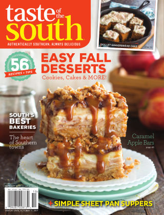 Taste of The South 2017-08-08