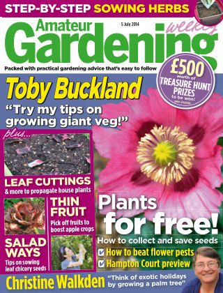 Amateur Gardening 5th July 2014