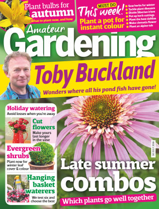Amateur Gardening 30th July 2016