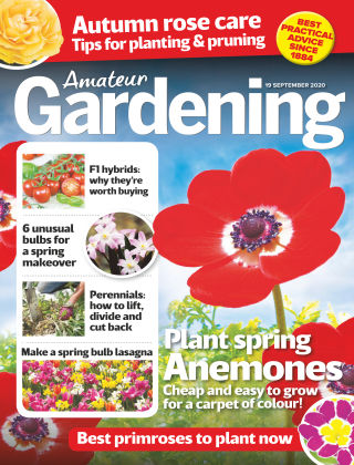Amateur Gardening 19th September 2020