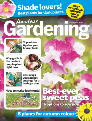Amateur Gardening 10th October 2020