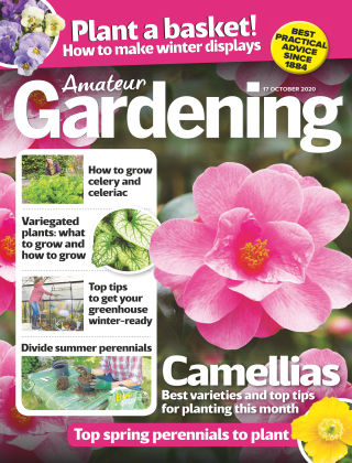 Amateur Gardening 17th October 2020