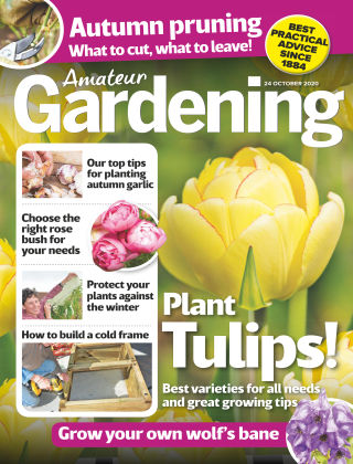 Amateur Gardening 24th October 2020