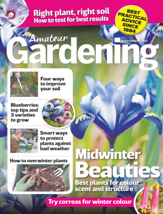 Amateur Gardening 5th December 2020