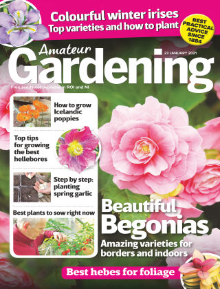 Amateur Gardening 23rd January 2021
