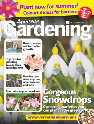 Amateur Gardening 30th January 2021