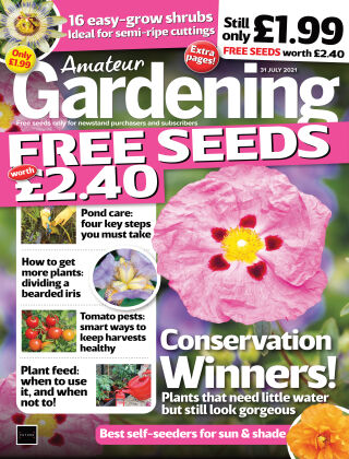 Amateur Gardening 31-Jul-21