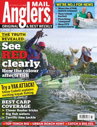 Angler's Mail 13th September 2016