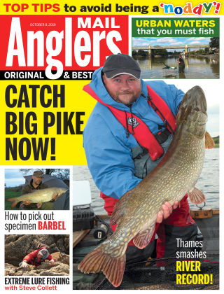 Angler's Mail Oct 8 2019