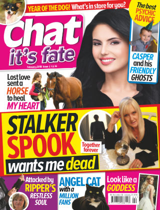 Chat it's Fate Feb 2018